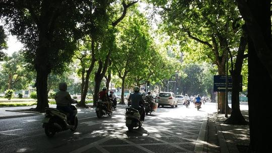 Hà Nội đang tích cực mở rộng không gian xanh