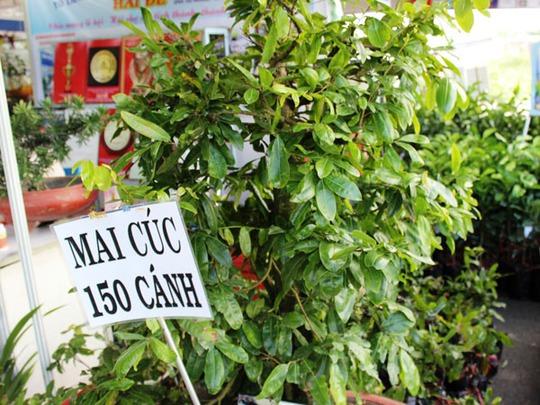 Nhiều loại nông sản độc, lạ từ các tỉnh thành được giới thiệu tại hội chợ.