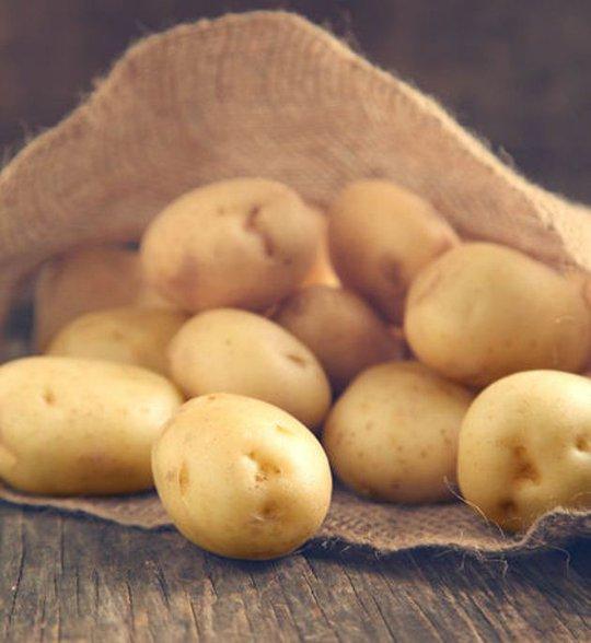 Cô gái trẻ phải chịu một phen đau đớn vì ngây thơ tin rằng khoai tây có thể giúp cô tránh thai. Ảnh minh họa: Toronto Sun