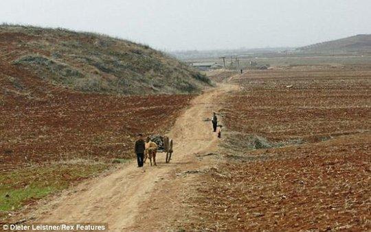 Đường ngoại ô ở Triều Tiên. Ảnh: Dieter Leistner