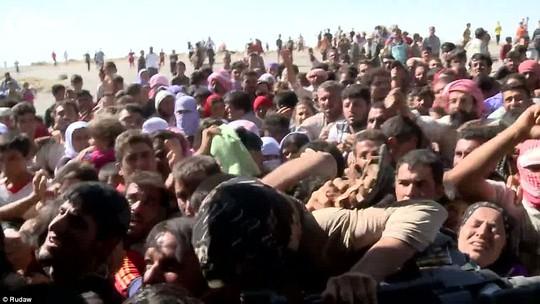 Cộng đồng người Yazidi khốn khổ vì thiếu lương thực, nước uống.