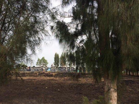 Sao Việt rộn rã trước thềm Tết Giáp Ngọ