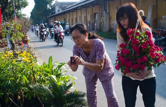 Giỏ hoa này được bán với giá 150.000 đồng. Người dân có xu hướng lựa mua những chậu hoa từ mức giá này trở xuống.