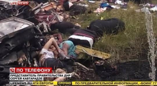 Những hình ảnh khủng khiếp tại hiện trường. Toàn bộ người trên máy bay đều thiệt mạng. Ảnh: LIFE NEWS