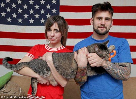 """Tranh nhau mua mèo """"quái vật"""" dài gần 1 mét"""