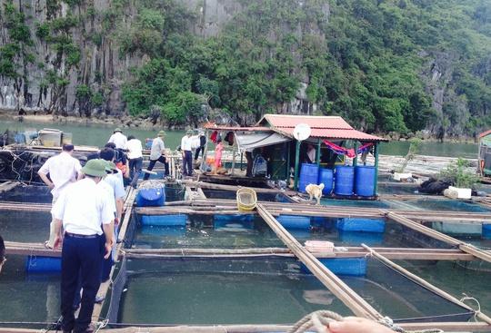 Vận động nhân dân không ở lại trên chòi cá
