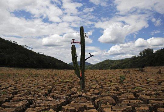Trái đất nóng dần lên khiến một số khu vực bị hạn hán nặng. Ảnh: Reuters