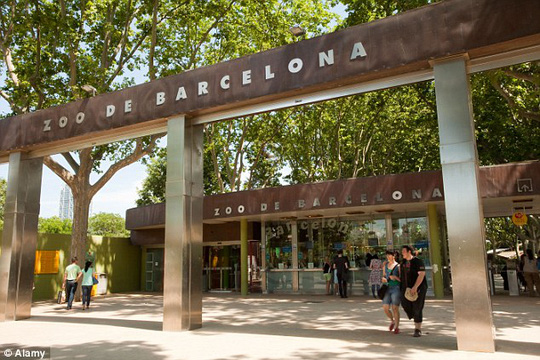 Vườn thú Barcelona, Tây Ban Nha. Ảnh: Alamy