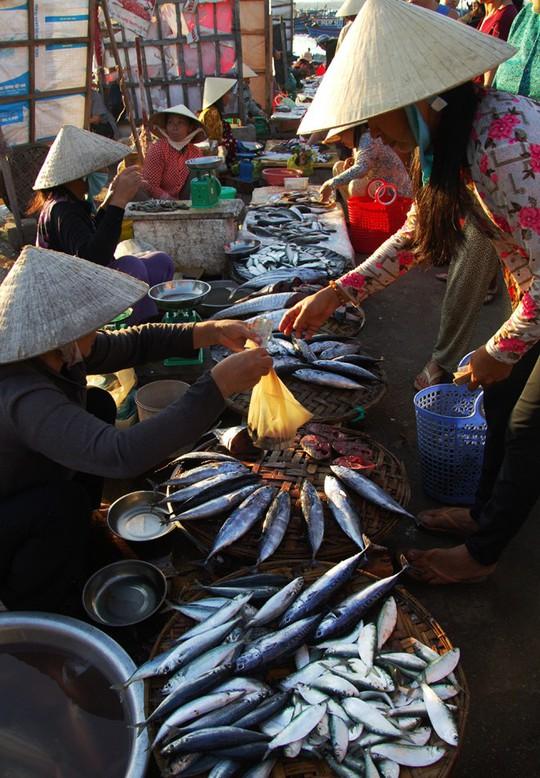 Người mua tha hồ chọn lựa những loại thủy hải sản vừa bắt lên. Các mặt hàng này không chỉ có giá rẻ, mà còn tươi ngon do mới đánh bắt về.