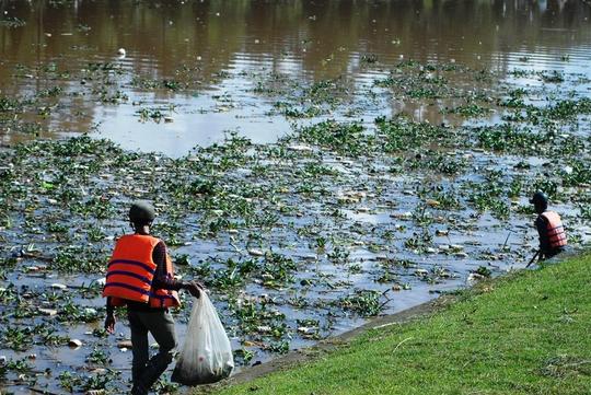 Hồ Xuân Hương ngập trong rác thải.