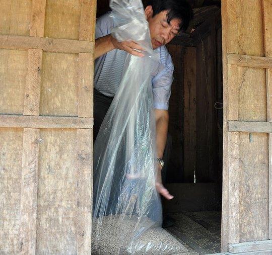 Chuyên gia của Bộ Y tế thu gom mẫu lúa gạo mốc do người dân cất giữ để xét nghiệm