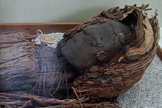 Xác ướp 7.000 ngàn năm tuổi ở Chile