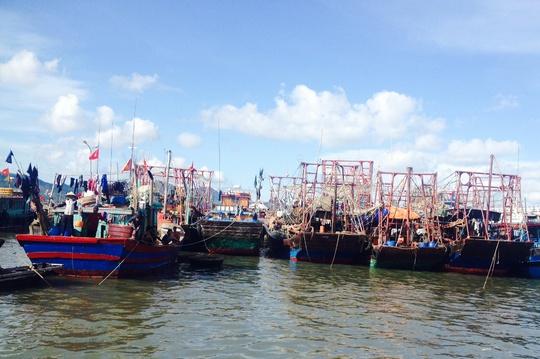 tàu thuyền Quảng Ninh về nơi trú ẩn an toàn