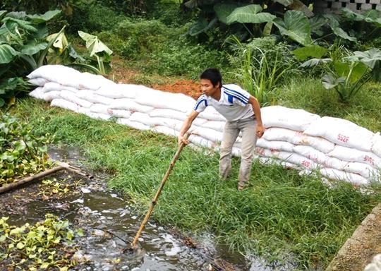 Bể chứa bên nước thải chưa qua xử lý không che đậy phía trong trang trại