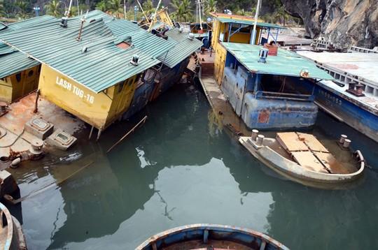 Nằm trôi nổi không xa chiếc Green Sea là gần chục con tàu mục nát của Công ty TNHH MTV vận tải biển Viễn dương Vinashin (Vinalines)