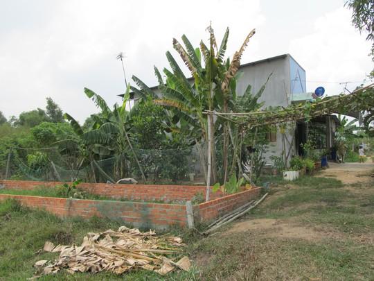 Những căn nhà mọc lên từ đất ruộng của ông Hai Non (ấp Mũi Lớn 1, xã Tân An Hội, huyện Củ Chi). Ảnh: MINH KHANH