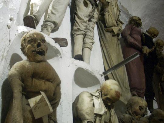 Những bộ xương treo dọc các bức tường khiến người xem