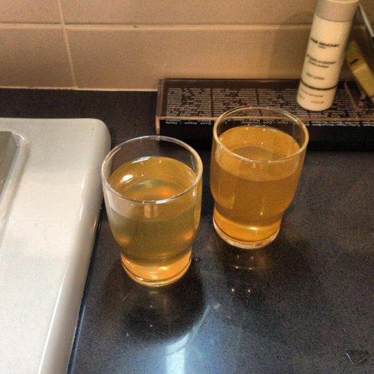 Nhân viên khách sạn khuyên khách không nên rửa mặt bằng nước trong nhà vệ sinh (trong hình) bởi rất nguy hiểm. Ảnh: Business Insider