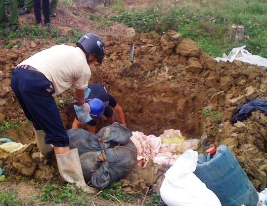 Gần 2 tấn bì lợn thối được Chi cục Quản lý thị trường Thanh Hóa mang đi tiêu hủy