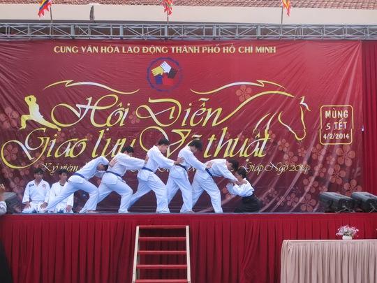 Chương trình biểu diễn võ thuật tại lễ hội