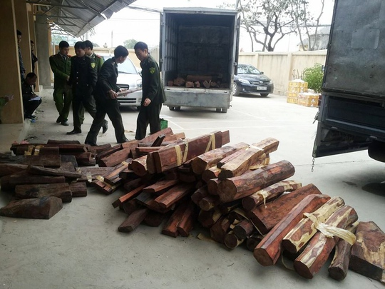 Lực lượng chức năng đang kiểm kê số gỗ quý không giấy tờ chuyển từ TP HCM ra Hà Nội bằng đường hàng không