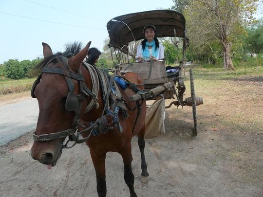 Vó ngựa Bagan