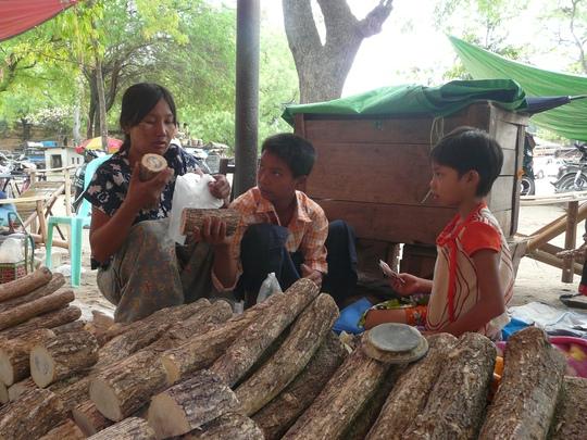 Thanaka - loại gỗ lấy phấn thoa mặt của phụ nữ Myanmar