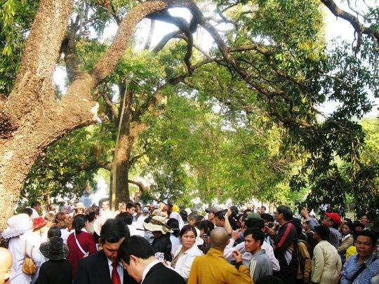Hàng ngàn người đến chùa Từ Quang xem xoài Đá Trắng.