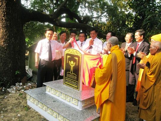 Lãnh đạo tỉnh và Ban trị sự giáo hội Phật giáo tỉnh Phú Yên dựng bia công nhận Cụm cây di sản xoài Đá Trắng
