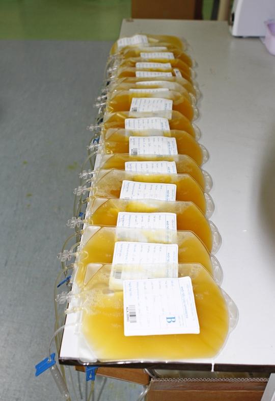 Những đơn vị máu đầu tiên vừa được tiếp nhận từ đội ngũ nhân viên y tế của Viện....
