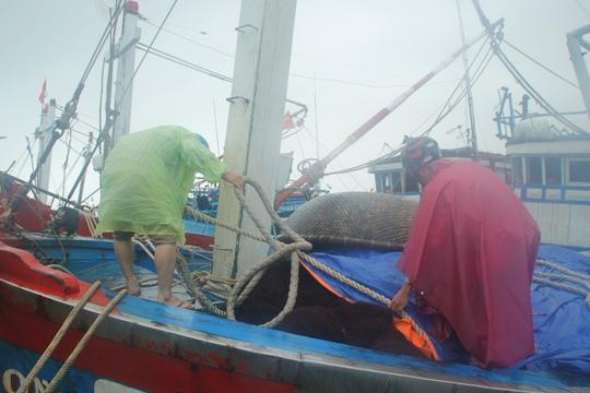 Ngư dân huyện Núi Thành, tỉnh Quảng Nam đang neo đậu tàu thuyền tránh bão