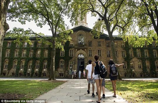 ĐH Princeton thuộc tốp 10 trường ĐH chất lượng nhất năm 2014