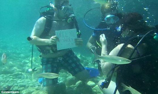 Anh Taylor cầu hôn bạn gái dưới đáy biển. Ảnh: Daily Mail