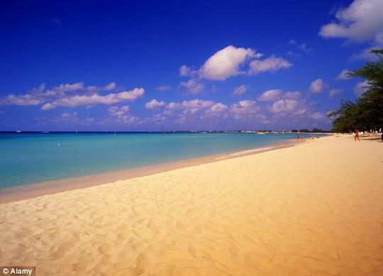 Máy bay phải hạ cánh gấp ở đảo Grand Cayman do cô dâu chú rể cãi vã