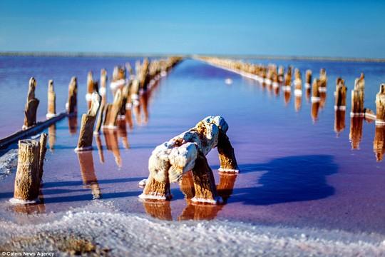 Rực rỡ hồ muối hoang ở Crimea