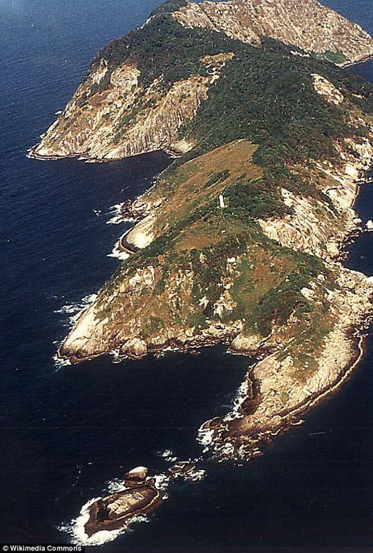 Đảo Ilha de Queimada Grande