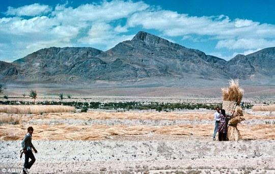 Mashid sinh ra và lớn lên tại một ngôi làng hẻo lánh của Iran. Ảnh: Alamy