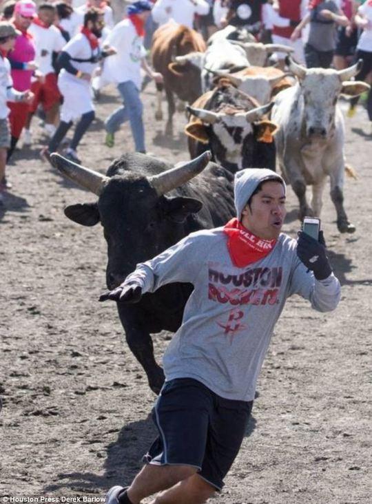 Anh chàng Christian chạy bán sống bán chết để thoát khỏi đám bò đực  nhưng tay vẫn cầm điện thoại chụp ảnh. Ảnh: Houston Press