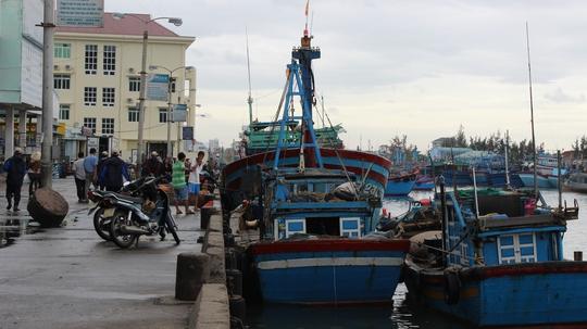 Tàu cá ngư dân Miền Trung đã cập cảng tránh bão