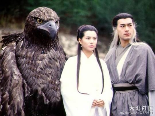 Thần điêu đại hiệp phiên bản 1995 do Lý Nhược Đồng và Cổ Thiên Lạc vào vai Tiểu Long Nữ, Dương Quá