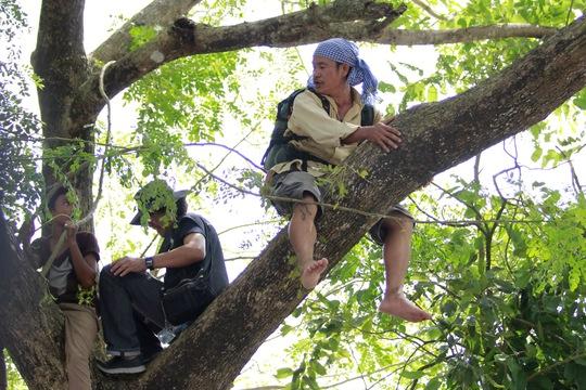 Nhiều người trèo lên các cây cao chờ đợi theo dõi đua bò