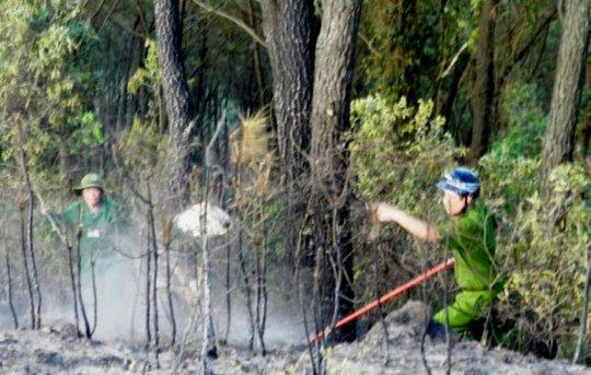 Hàng trăm người đã được huy động để chữa cháy