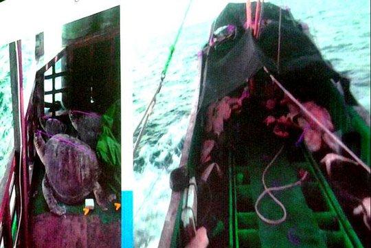 Tàu cá Trung Quốc mới bị Philippines bắt giữ. Ảnh: Inquirer.net