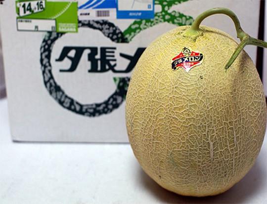 Một cặp dưa vàng Yubari King của Nhật Bản từng được rao bán trên mạng internet với giá 23.500 USD (tương đương 490 triệu đồng) và được coi là loại trái cây đắt tiền nhất thế giới.
