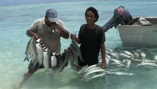 Cá là nguồn xuất khẩu duy nhất của đảo. Ảnh: BBC