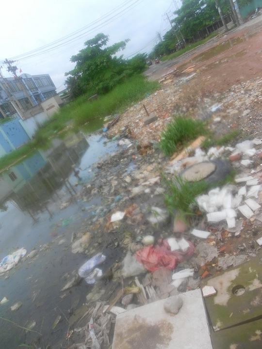 Do không có hệ thống thoát nước nên công ty, xí nghiệp xả nước thải sinh hoạt thẳng ra đường, đọng thành vũng gây ô nhiễm môi trường nghiêm trọng.