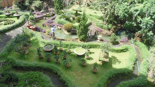 Một góc khu vườn cùa chủ doanh nghiệp tư nhân trà ....