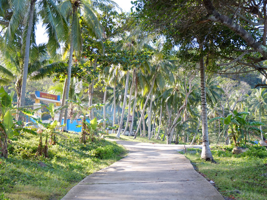 Con đường ven biển rợp bóng dừa ở đảo Thổ Chu
