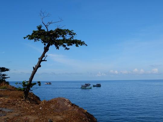 Xanh là màu chủ đạo trên con đường ven biển của đảo Thổ Chu