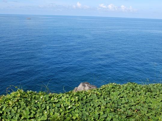 Rã cẳng trên đảo Thổ Chu